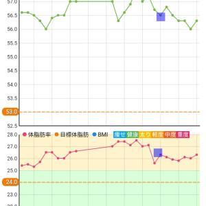 【14日目】50日間ダイエット2週間経過