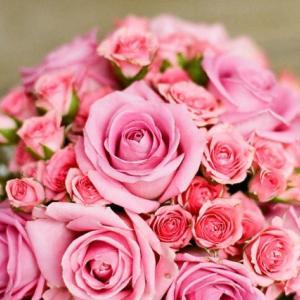 【運命のパートナーと出逢う】マリッジ開花セッションのご案内(10/17募集開始)