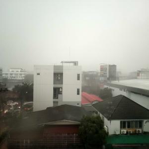 大雨からーの