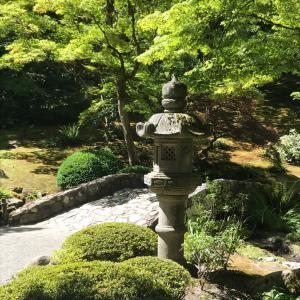 シアトルの日本庭園