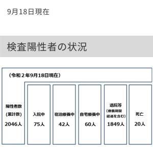 世田谷区内の新型コロナウイルス感染症の検査陽性者は21人!