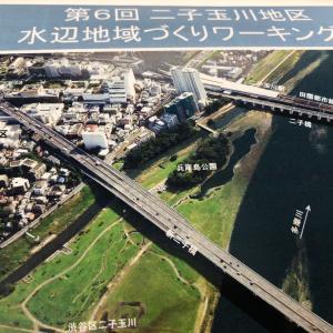 第6回二子玉川地区 水辺地域づくりワーキング