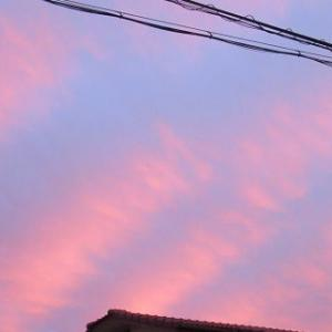 夕焼けが綺麗でした!