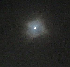 雨の止み間にお月さまが見えました♪