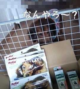 お届け物とおやつ箱