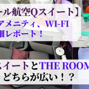 【カタール航空Qスイートはエレガントで機能的!】座席、アメニティ、Wi-Fiなど詳細レポート!前向きと後ろ向きはどちらが良い?QsuiteとANAのTHE ROOMはどちらが広い!?