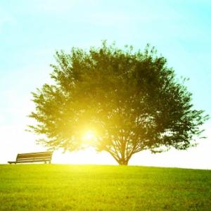 happy☆へと導くのは、素直な心