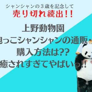抱っこシャンシャンの通販・購入方法は??パンダに癒されすぎてやばいっ!!
