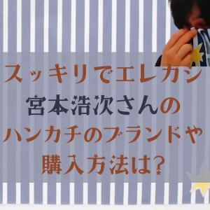 スッキリでエレカシ宮本浩次さんのハンカチのブランドや購入方法は?