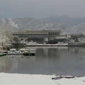 雪の宝ヶ池