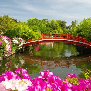 5月の神泉苑