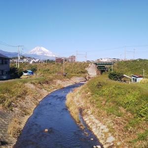 今日はちょろっと自転車 いつもの箱根峠。