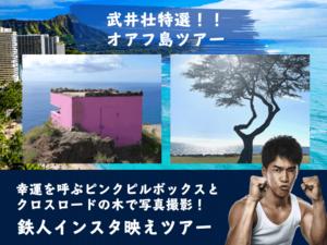 タビナカ社、武井壮特選・ハワイ西オアフ観光鉄人インスタ映えツアーの申込受付を開始