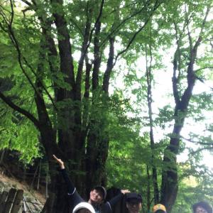 第2回ブラガユリ 天然記念物見てきた!
