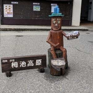 めざせ! 山婆ール  栂池高原~天狗原