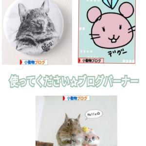 使ってください✰ 〜小動物ブログのバーナー〜
