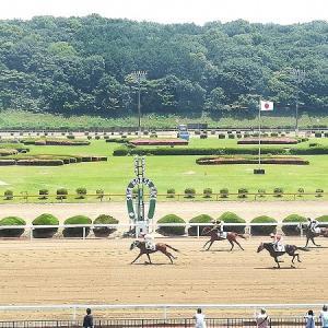 ある競走馬の死