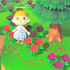 〈あつ森マイデザ〉バラの花びらとお花の地面