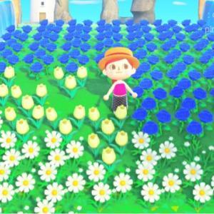 〈あつ森〉アロマ島の夢更新〜青バラとすずらん畑