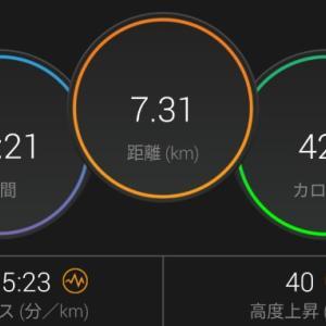 【ラン】楽しい様に走る【30分ジョグ+流し3本】