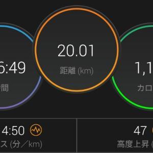 【ラン】1歩進んで2歩下がる【90分ペース走+1kmTT】