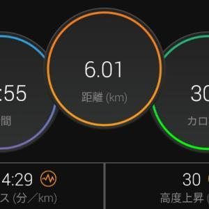 【ラン】お尻で走ってスピードアップ!【430ジョグ】