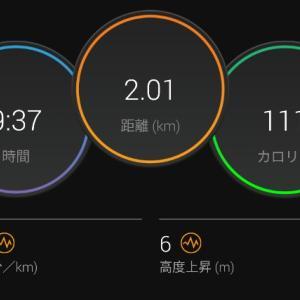 【ラン】こんなに走ってるのになぜ体重は減らない!?【ゆるジョグ】