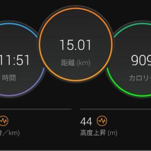 【ラン】久しぶりにBU実施も上がり切らず・・・【5km×3段BU】