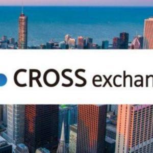 国産通貨 cross exchangeを語ろう。何が起きるのか9月が楽しみやね【クロスエクスチェンジ】