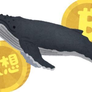 【驚愕】大口のクジラが利確する瞬間を捉えた映像がこちらwwwwwwww