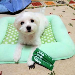 愛犬・愛猫用/健康サポート食品 MREフードプラス