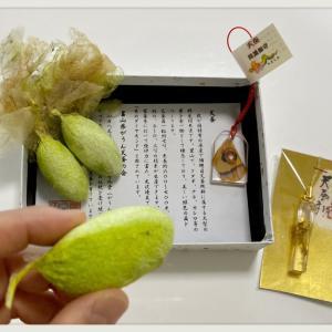 糸のダイアモンド