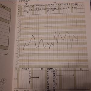 12周期目まとめ(クロミッド+HCG+黄体補充)