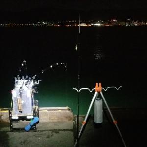 10/15 小樽港 厩岸壁の釣り