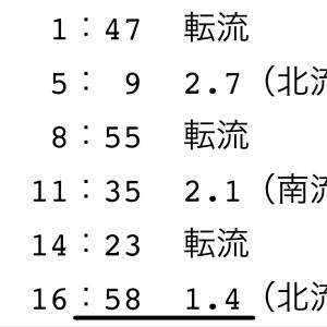 2019年第19戦 正月用の鯛やんけ!