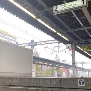 神戸でこれ