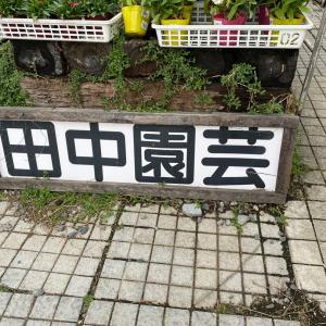 田中園芸さんに行ってきたよ❤️