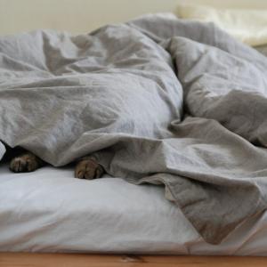 朝起きたら