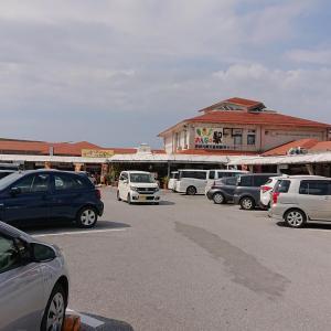 沖縄旅行 2日目 ② おんなの駅 なかゆくい市場~ビオスの丘~国際通り~コザ1番街