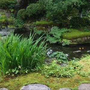 京都大原 実光院