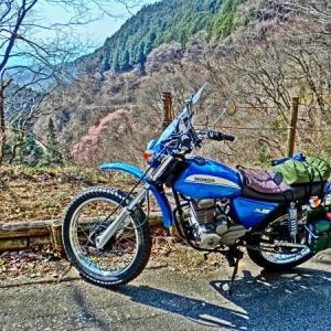XL230での初ツーリング 「陣馬街道・和田峠」