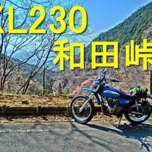 動画 陣馬街道~和田峠 XL230 2020y 0319