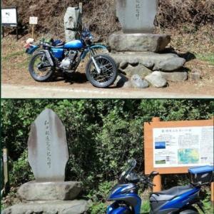 XL230とトリシティ155、和田峠2画面に編集 1080 60