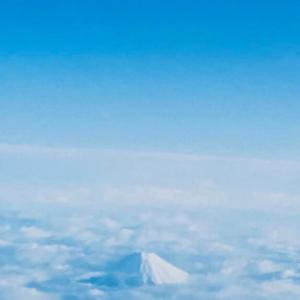 今日は東京!日帰りハードスケジュール(๑•̀ㅂ•́)و
