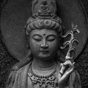 仏陀のことば 無駄な知識はいのちとり