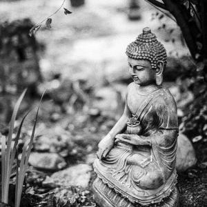 仏陀のことば 相手に判断をゆだねる