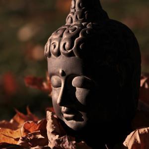 こころの深呼吸、禅の言葉13(阿呵呵)