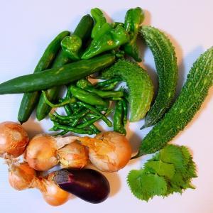 家庭菜園の収穫物