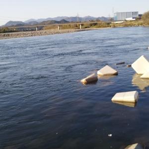 長良川調査そしてタイラバ風ルアーと管理用にブングもどき作成