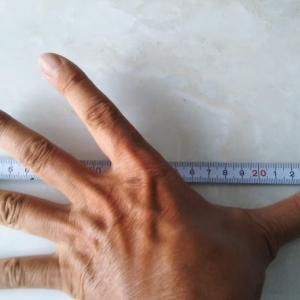 Hand scale